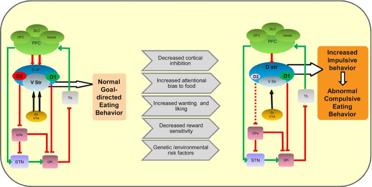 The neurobiological basis of binge-eating disorder