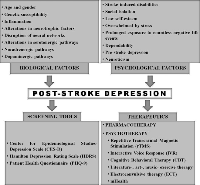 Post stroke depression: The sequelae of cerebral stroke - ScienceDirect