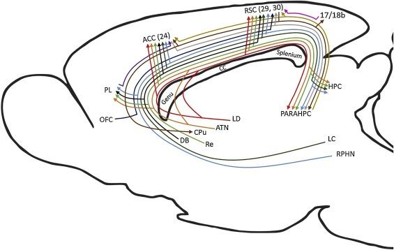 Mci Wiring Schematic Turn Signals on