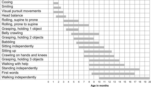 Amiel-tison Neurological Assessment Epub Download