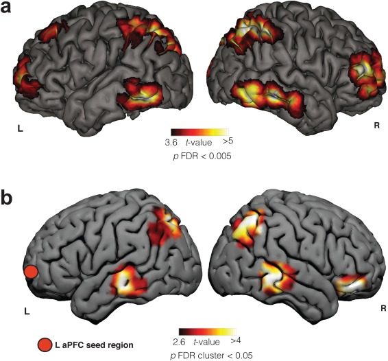 The cognitive neuroscience of lucid dreaming - ScienceDirect