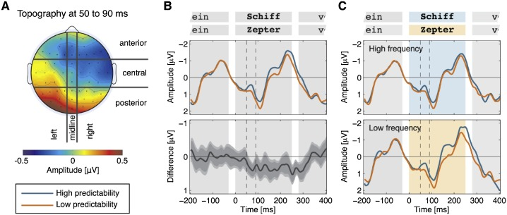 Do 'early' brain responses reveal word form prediction during