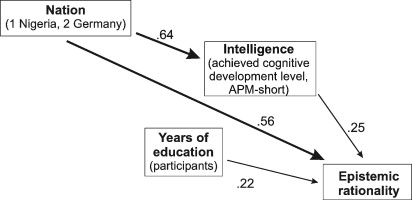 Cognitive ability and epistemic rationality: A study in Nigeria and