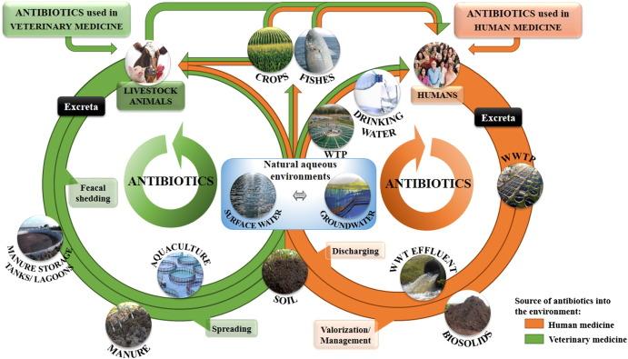 Residue Reviews: Reviews of Environmental Contamination and Toxicology: 097