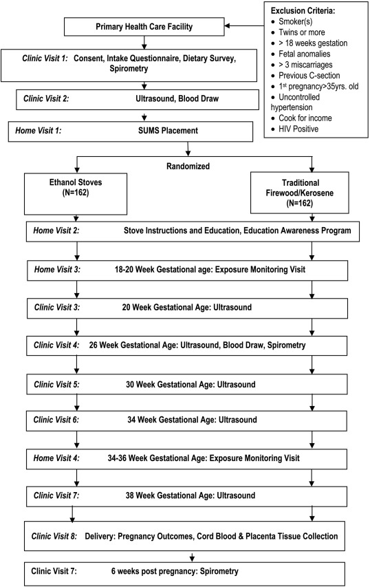 Pregnancy outcomes and ethanol cook stove intervention: A