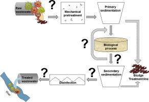 Antibiotic resistance in wastewater treatment plants