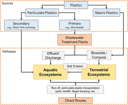 Particulate Plastics As A Vector For Toxic Trace Element Uptake By Aquatic And Terrestrial Organisms And Human Health Risk Sciencedirect Plastic animals tigers etc job lot. particulate plastics as a vector for