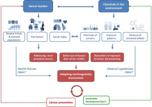 Carcinogenicity Assessment Addressing The Challenges Of Cancer And Chemicals In The Environment Sciencedirect