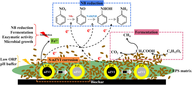Substantially enhanced anaerobic reduction of nitrobenzene