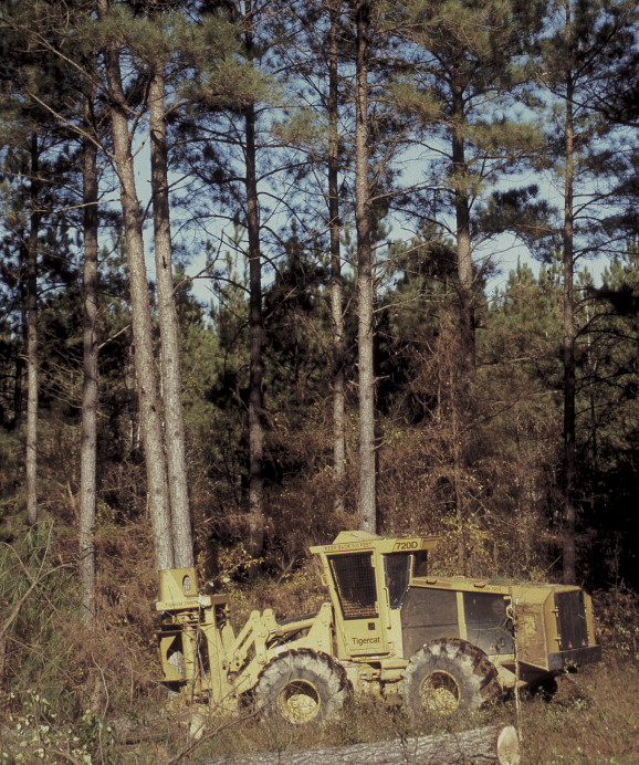 """Things Was Different in the South"""": The industrialization of"""