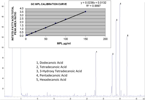 The adsorption of allergoids and 3-O-desacyl-4′-monophosphoryl lipid