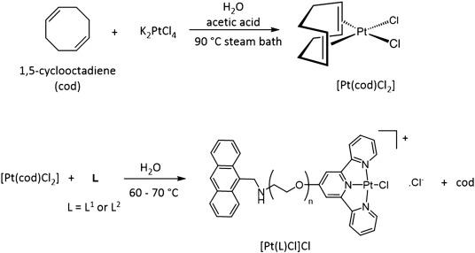 Anthracene-terpyridine metal complexes as new G-quadruplex