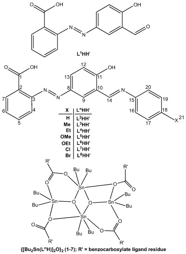 New Dibutyltiniv Ladders Syntheses Structures And Optimization