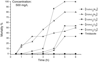 isotretinoin roaccutane