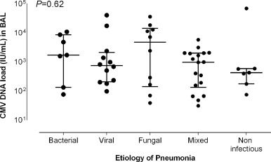 Pulmonary cytomegalovirus (CMV) DNA shedding in allogeneic