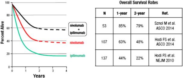 The development of immunomodulatory monoclonal antibodies as a new