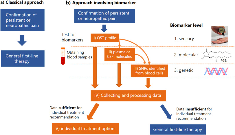 Potential biomarkers for persistent and neuropathic pain