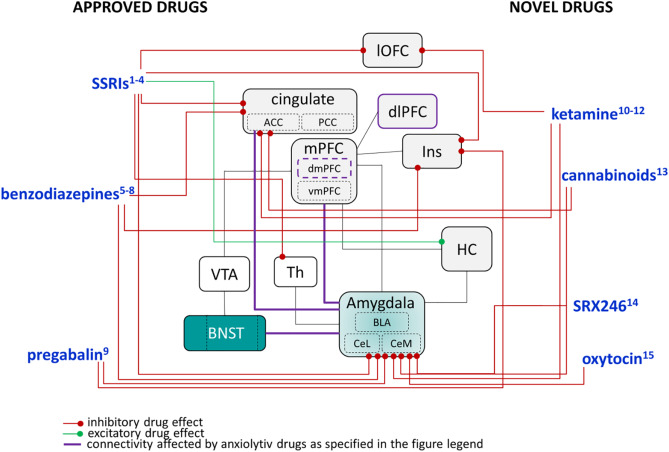 Novel pharmacological targets in drug development for the