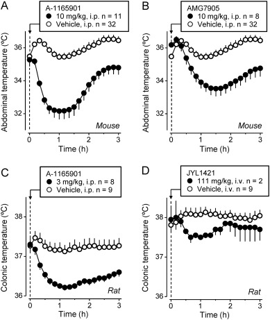 Hyperthermia Induced By Transient Receptor Potential