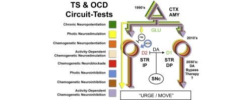 back to the future circuit testing ts ocd sciencedirect rh sciencedirect com