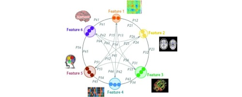 Positive Symptoms in Schizophrenia - Verywell Mind