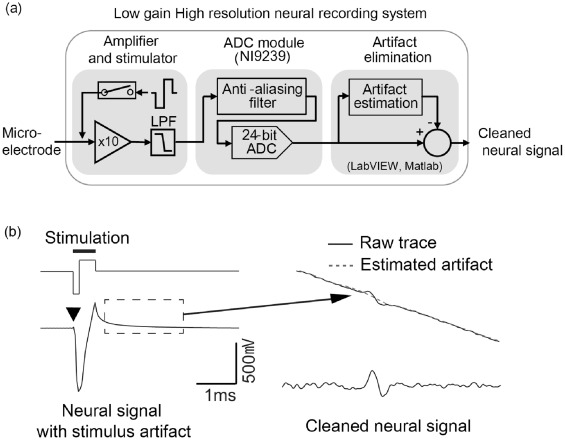 Recovery of early neural spikes from stimulation electrodes using a