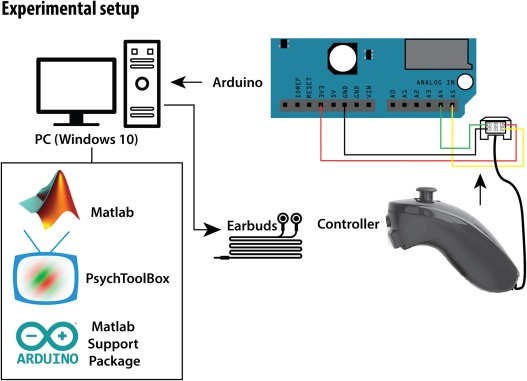 Modular auditory decision-making behavioral task designed
