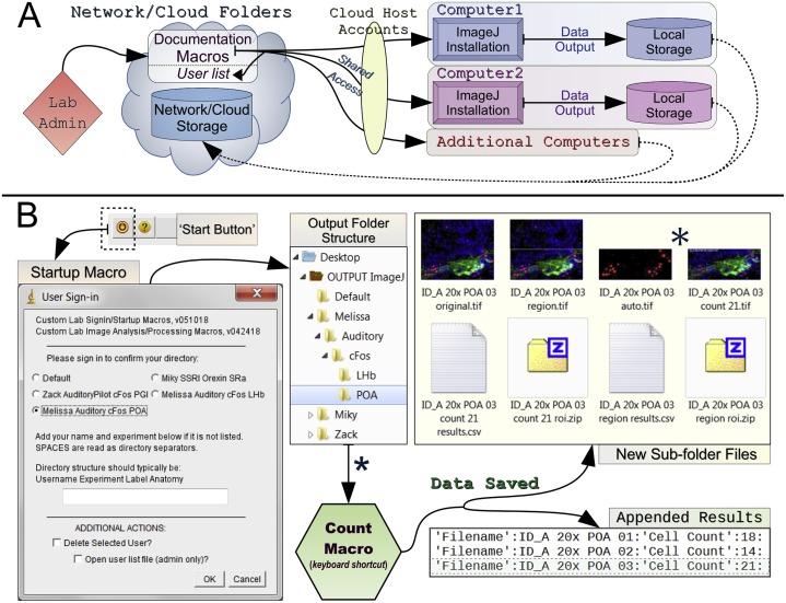 A versatile macro-based neurohistological image analysis