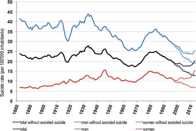 Rethinking suicides as mental accidents: Towards a new