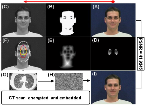 A skin tone detection algorithm for an adaptive approach to