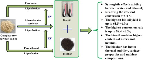 Highly efficient conversion of camphor tree sawdust into bio