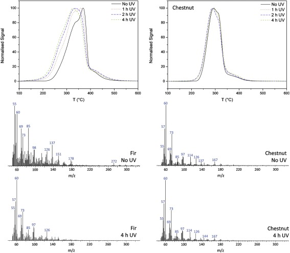 Degradation of wood by UV light: A study by EGA-MS and Py-GC