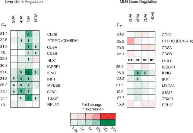 Identification of key immune mediators regulating T helper 1