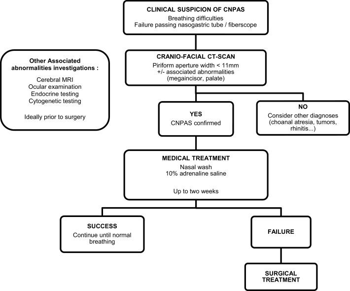 Congenital nasal pyriform aperture stenosis: Elaboration of a ...