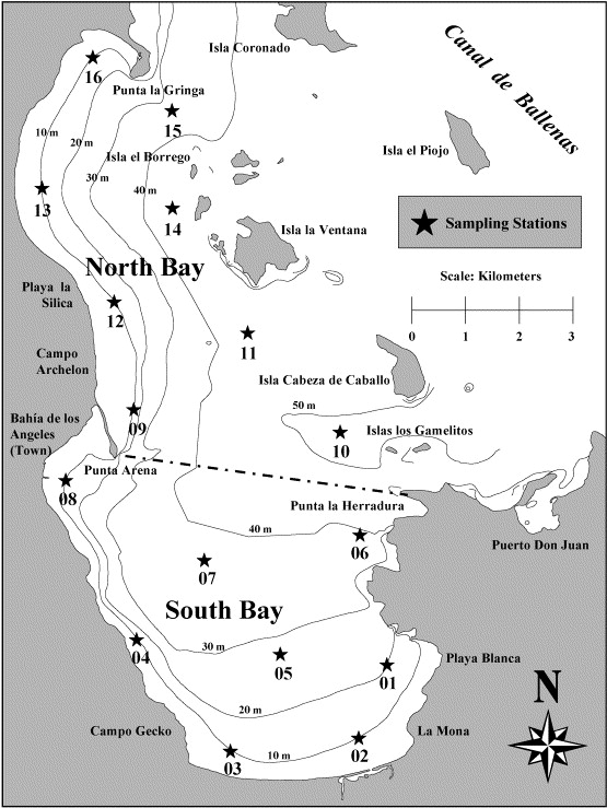 Bahia De Los Angeles Map.Foraging Ecology Of Whale Sharks Rhincodon Typus Within Bahia De