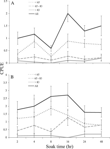 A Comparison Of American Lobster Size Structure And Abundance Using