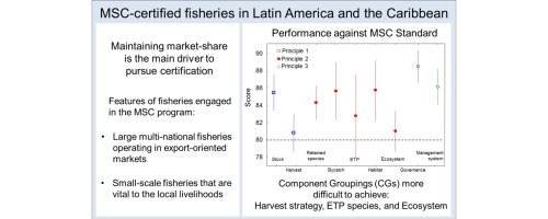 The Marine Stewardship Council certification in Latin