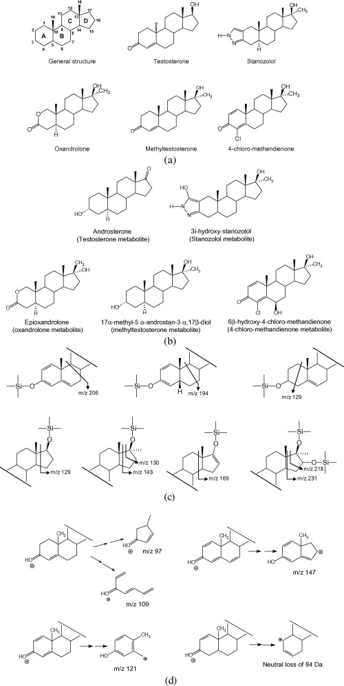 Analytical Strategies Based On Mass Spectrometric Techniques For The