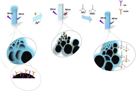 Recent advances in carbon quantum dot-based sensing of heavy metals