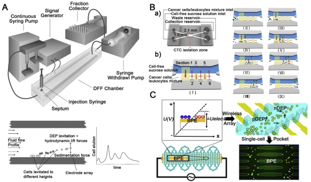 Microfluidics-based approaches for separation and analysis of