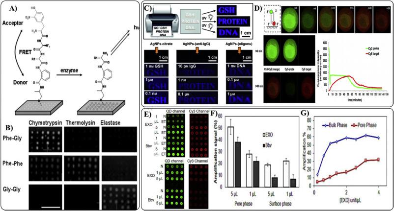 Application Of Fluorescence Resonance Energy Transfer To