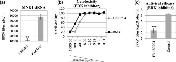 MNK1 inhibitor as an antiviral agent suppresses buffalopox virus