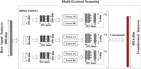 A deep Boltzmann machine and multi-grained scanning forest ensemble