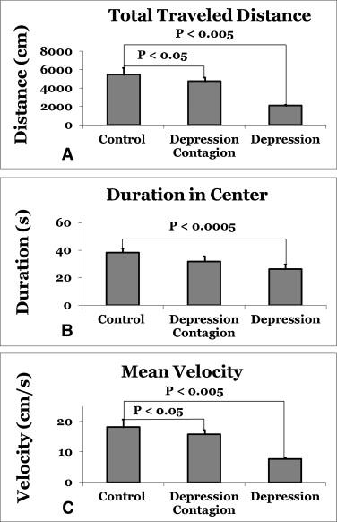 Establishment of an animal model of depression contagion