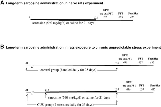 Antidepressant-like effects of long-term sarcosine treatment
