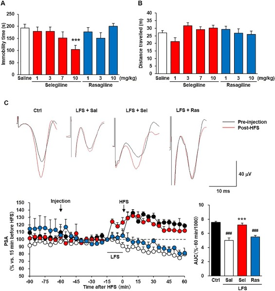 Selegiline ameliorates depression-like behaviors in rodents and