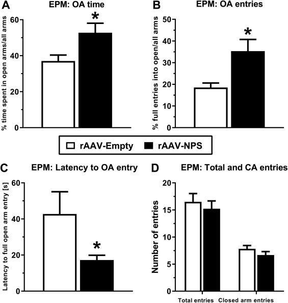 Sustained overexpression of neuropeptide S in the amygdala
