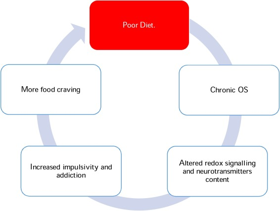 Towards A Comprehensive Theory Of Obesity And A Healthy Diet The Causal Role Of Oxidative Stress In Food Addiction And Obesity Sciencedirect