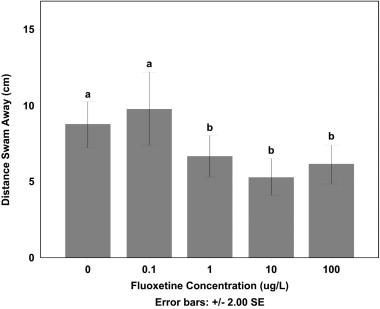 Buying fluoxetine online