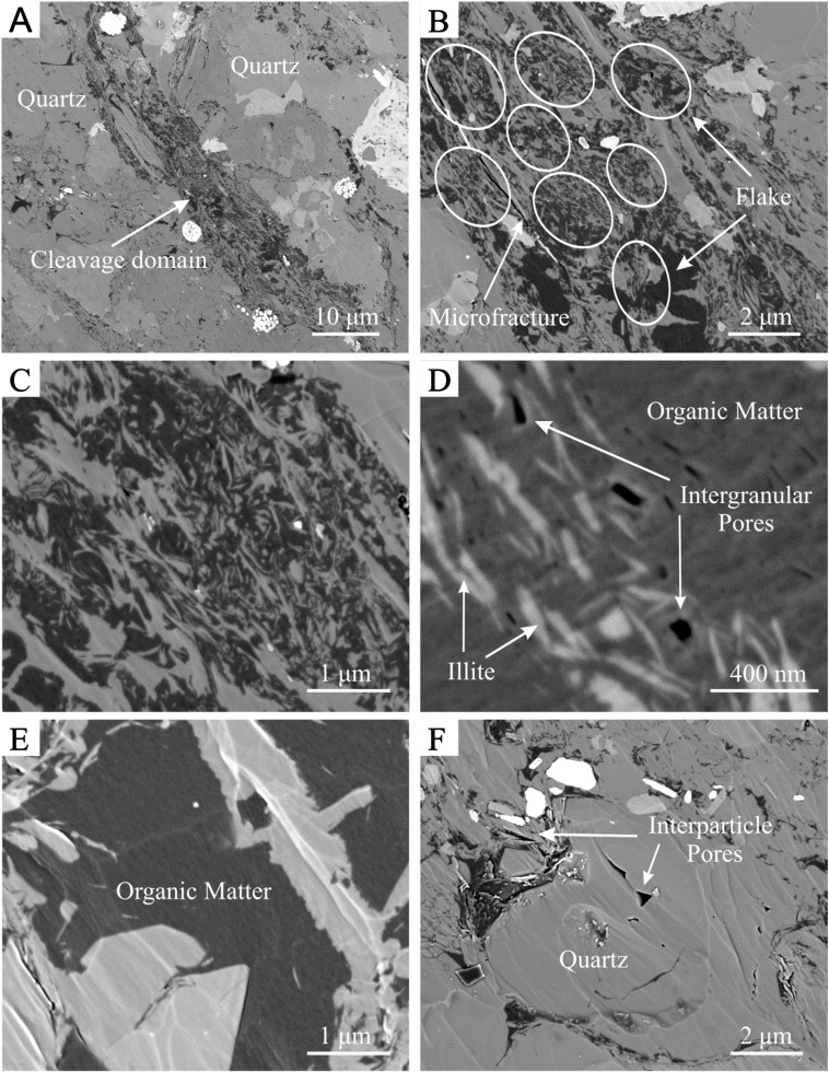 Organic matter/clay mineral intergranular pores in the Lower
